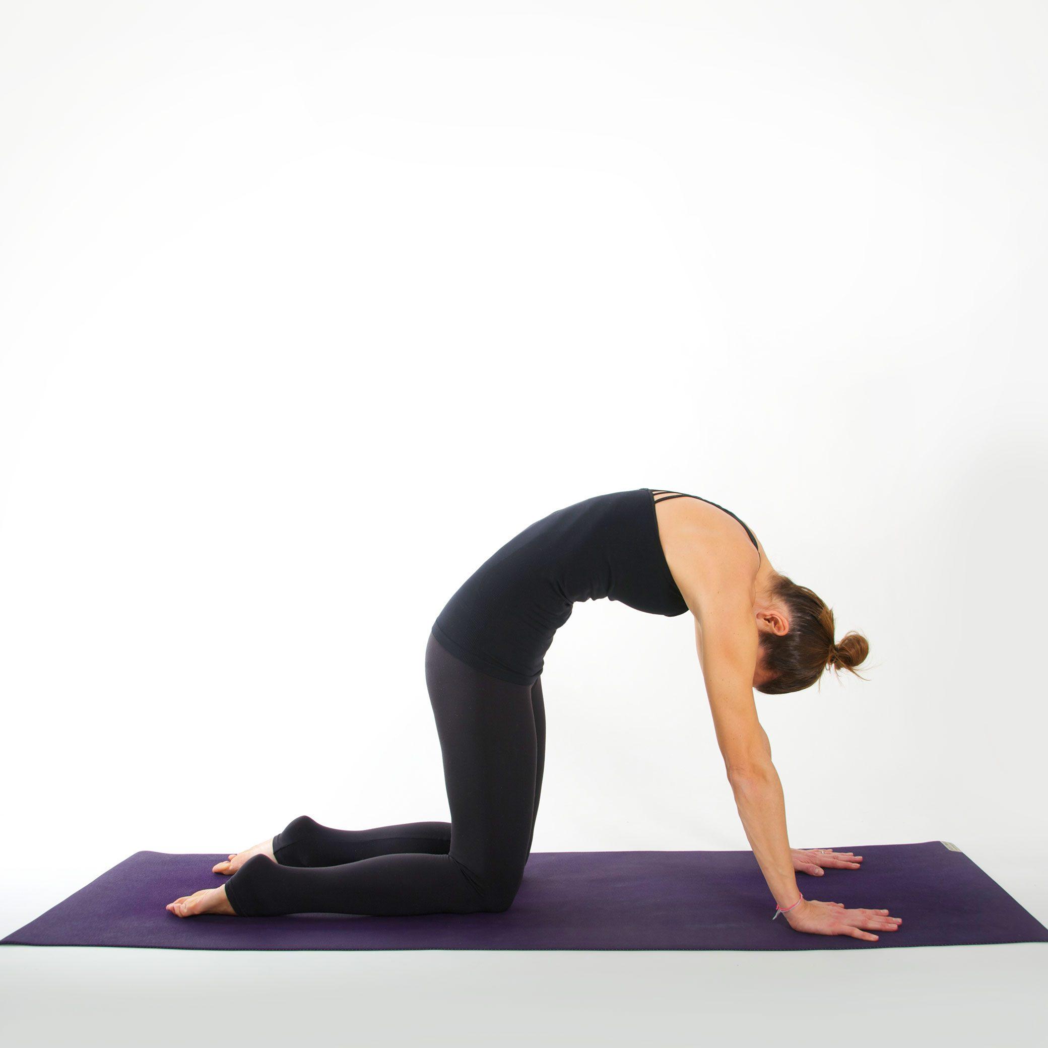 Yoga Asana I KATZE I myyogaflows